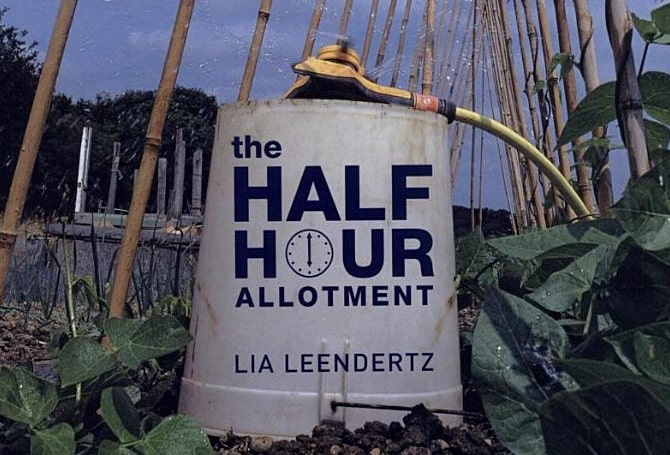 The half hour allotment